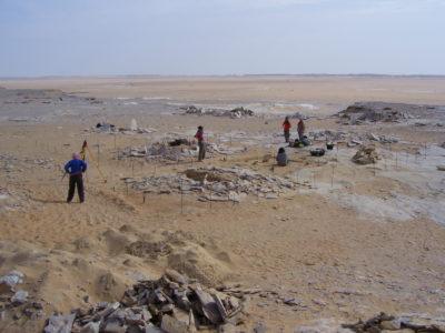 Oasi di Farafra.  Veduta generale  dell'area di scavo nel Villaggio di Sheikh el Obeiyid, sul Plateau settentrionale.