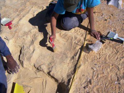 Oasi di Farafra. Attività di scavo  all'interno del  villaggio di  Sheikh el Obeiyid..