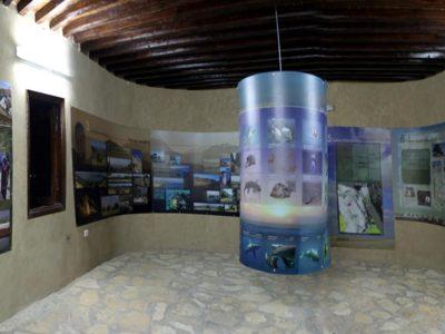 """Oasi di Farafra. Interno del  """"Centro  per Visitatori""""  costruito dalla Cooperazione Italo-Egiziana  nella cittadina  Qasr Farafra anche con la collaborazione della Missione Archeologica."""