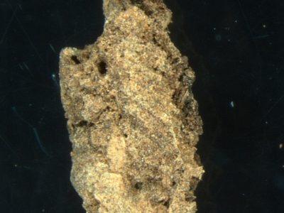 Abu Erteila (Sudan), Kom I, Sepoltura T 103, Frammento di sudario in lana visto al microscopio (foto Giuliani).