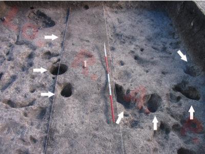 Fig. 7. KSO-Noen Din Operation 3 livello basale: fosse di palo, relative a una struttura sopraelevata di cui non è stato possibile ricostruire la pianta, testimoniano la natura abitativa del sito.