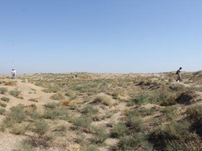 Ricognizione geo-archeologica di un canale. • Geoarchaeological survey.